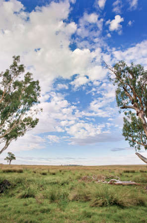 The huge expanse of a grazing farm in the Australian outback.