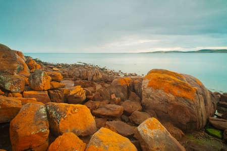 rugged: Orange lichen on the rocks of a very rocky, rugged coastline. Stock Photo