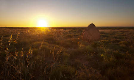 australian outback: A termite mound in the rural Australian outback countryside at sunset. Stock Photo