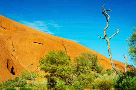 Close up of Australias iconic Uluru showing the huge size of this national landmark as it climbs diagonally up the frame into the sky.
