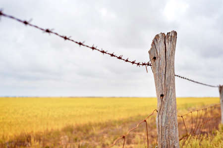 Close up of the fence line to a farmers harvested field of wheat. Stock Photo