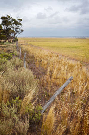 Looking along the fence line of a harvested agricultural farm growing wheat. Stock Photo