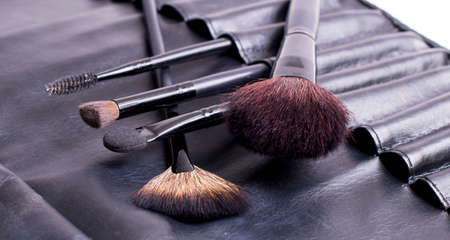 Make-up brushes in a leather black case photo