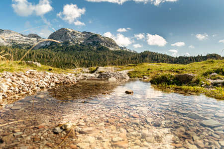 Impressive mountain landscape, blue sky with white clouds, rocky peaks and fir forests. In the foreground the clear water of a stream. Piani Eterni, Dolomiti Bellunesi National Park, Italy