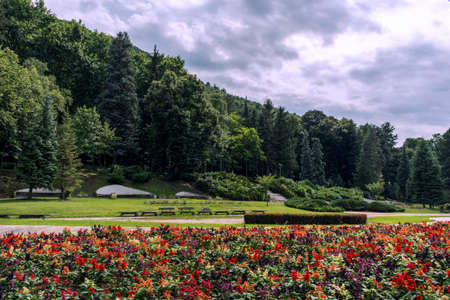 Resort park with beautiful garden and forest with dramatic blue sky. Healthy and spa concept