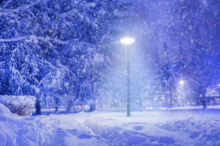 Winter park in the evening covered with big snow and shining lantern through snowing. Its snowing and footpath in snow. Winter idyll in the night and cold weather concept