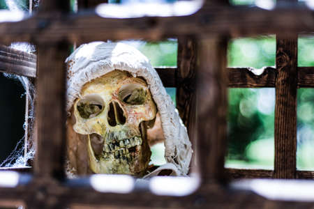 Scary old human skeleton in a wooden cage in torn clothes and blurred green background on sunny day outdoor. A medieval prisoner suffered from torture in prison. Close up, selective focus