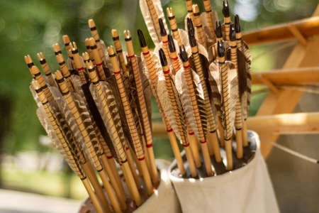 Many handcrafted arrows in a brown leather quiver full with arrows in crafted in medieval style, each arrow with different brown color on the feather. Close up, selective focus