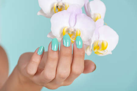 Beautiful girl hand with a turquoise color manicure on nails and light lilac orchids flower isolated on soft blue background in studio. Manicure and beauty concept. Close up, selective focus 写真素材