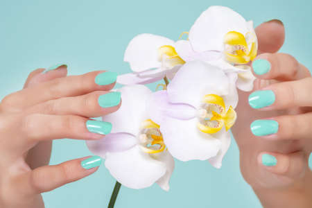 Female hand with a turquoise color manicure on nails and light lilac orchids flower isolated on soft blue background in studio. Manicure and beauty concept. Close up, selective focus