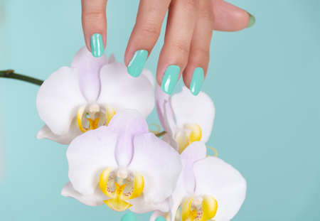 Girl hand with a turquoise color manicure on nails and light lilac orchids flower isolated on soft blue background in studio. Manicure and beauty concept. Close up, selective focus