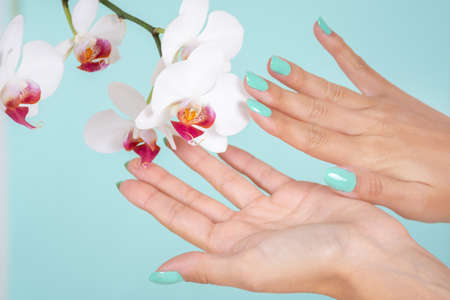 Woman hands with a turquoise color manicure and white orchids flower isolated on soft blue background in studio. Manicure and beauty concept. Close up, selective focus 写真素材