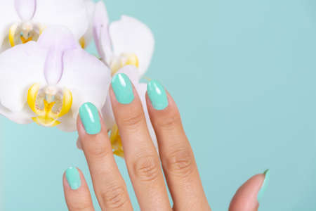 Young girl hand with a turquoise color manicure on nails and light lilac orchids flower isolated on soft blue background in studio. Manicure and beauty concept. Close up, selective focus