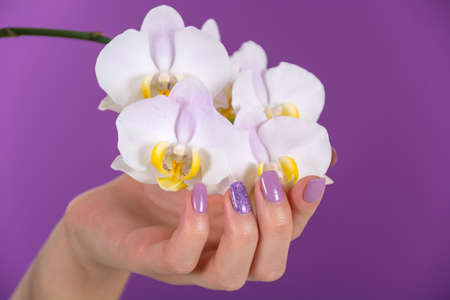 Beautiful girl hand with a lilac color nails polish gel and beautiful orchid flower decoration on purple background in the studio. Manicure and beauty concept. Close up, selective focus 写真素材