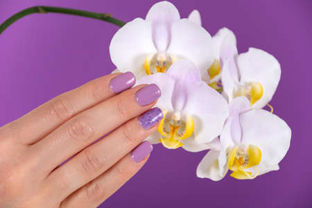 Beautiful woman hand with a lilac color nails polish gel and beautiful orchid flower decoration on purple background in the studio. Manicure and beauty concept. Close up, selective focus