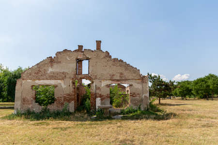A ruined old abandoned house without a roof on the yellow meadow on summer sunny day and blue sky and tree in the background
