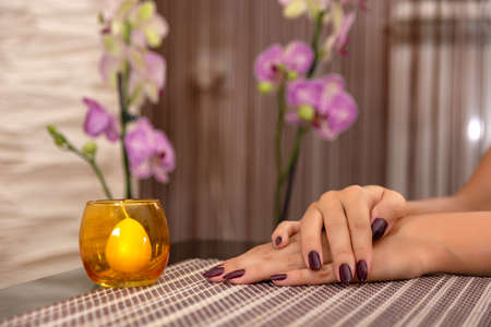 Woman hand with wine color nails polish on a desk and candle decoration on a desk in the beauty studio and blurred floral background. Manicure and beauty concept. Close up, selective focus 写真素材