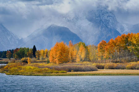 oxbow: Vibrant colors of Fall at Oxbow Bend Grand Tetons