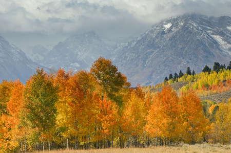 oxbow: Mountain vista with Fall colors Grand Tetons Stock Photo