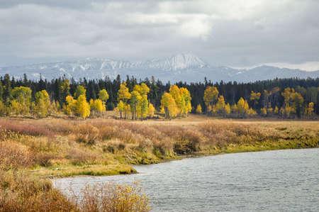 Moody Fall colors at Grand Tetons photo