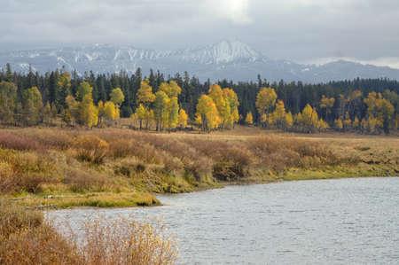 Turning leaves at Grand Tetons National Park photo