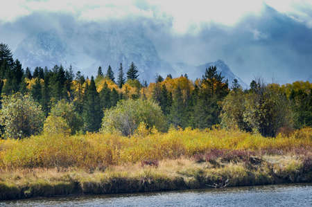 oxbow: Changing colors of Fall and Winter