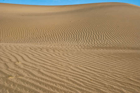 stovepipe: Desert dune at Stovepipe Wells in Mesquite Flats