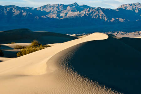 stovepipe: Curve dunes at Stovepipe Wells in Mesquite Valley Stock Photo