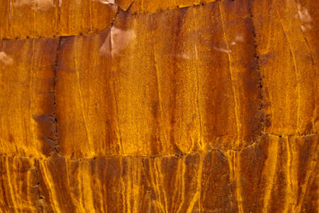 Orange and yellow rusted metal photo