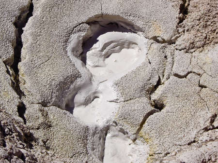 Mud pot in backcountry of Yellowstone Park