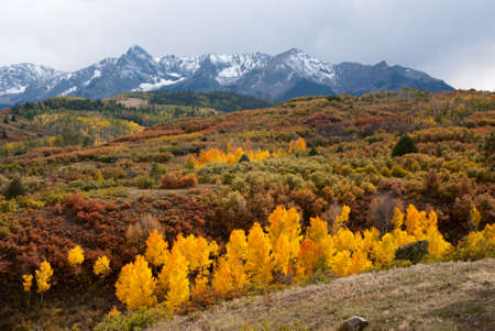 colorado mountains: Snow capped mountains and last colors of Fall in Colorado