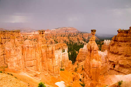 Bryce Canyon National Park, Utah USA in the rain