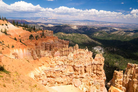 Landscape of Bryce Canyon National Park in Summer