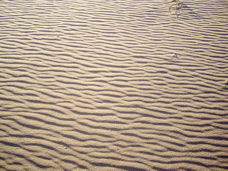 Waves of sand in the Mojave Desert