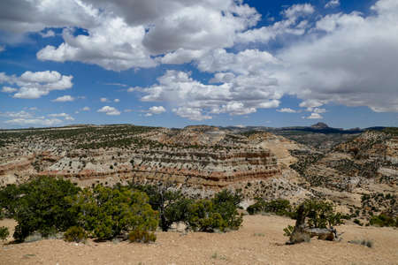 Geological Layers of New Mexico