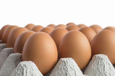 골 판지 트레이 갈색 계란을 가득.