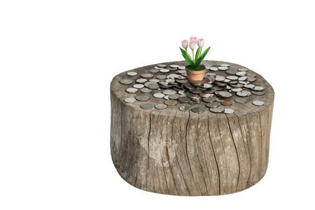 Tree in flowerpot with coin on white background. Clipping path