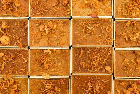 kaeng: Coconut custard squares with fried chopped onion topping Khanom Maw Kaeng
