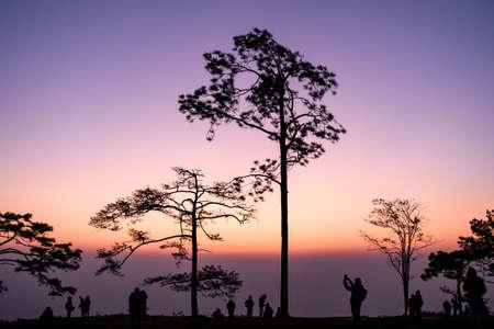 Before sunrise at 6AM in winter season at Phu Kradueng National Park