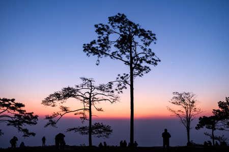 kradueng: Before sunrise at 6AM in winter season at Phu Kradueng National Park