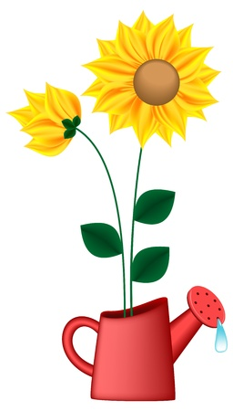 watering can: Watering can with sunflowers inside (EPS10)