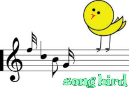song bird: Make beautiful music with a song bird.