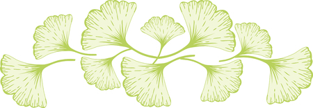 Relax and enjoy a cup of ginkgo biloba tea today  Add an oriental flavor to your projects with this design on cozies kitchen towels and more. Illustration