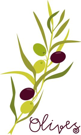 This olive branch design will add an elegant yet Tuscany touch to your projects on cozies kitchen towels and more.