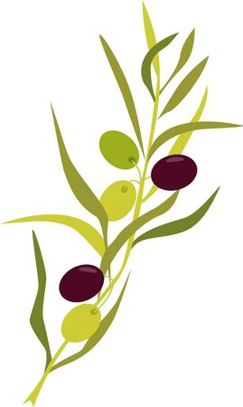 extra virgin olive oil: This olive branch design will add an elegant yet Tuscany touch to your projects on cozies kitchen towels and more.