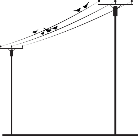 Birds sitting and singing on Wire Listen to the music and keep your mind and soul calm always. Illustration
