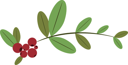 mountain cranberry: These fantastic edible evergreen groundcovers produce delicious cranberrylike berries great for sauces jellies and cooking. Pick those design by embroidery patterns Illustration
