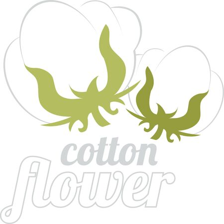 genus: Cotton is a soft fluffy staple fiber that grows in a boll or protective capsule around the seeds of cotton plants of the genus Gossypium Illustration