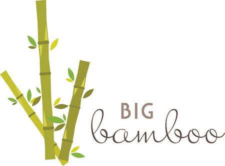 whose: Il bamb� � molto speciale. Si tratta di una risorsa naturale in rapida crescita il cui tasso di biomasse � insuperabile nel regno vegetale. Vettoriali