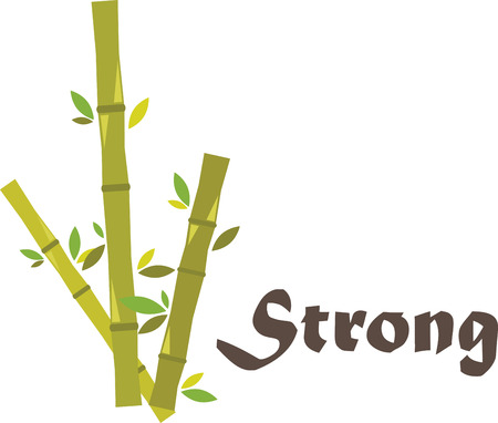 Bamboo is very special. It is a fast growing natural resource whose rate of biomass generation is unsurpassed in the plant kingdom. Stock Illustratie